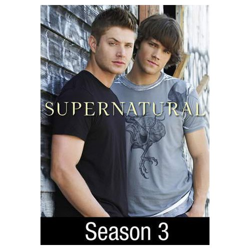 Supernatural: No Rest for the Wicked (Season 3: Ep. 16) (2008)