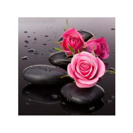 DIY 5D Diamond Painting Pink Rose Rhinestone Embroidery Full Drill Gem Pictures Wall Art Craft and Home Decoration ()