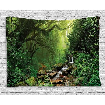 Rainforest Decorations Collection Forest In Nepal Footpath Wildlife Spring Plant And Stones Moisture Water Print