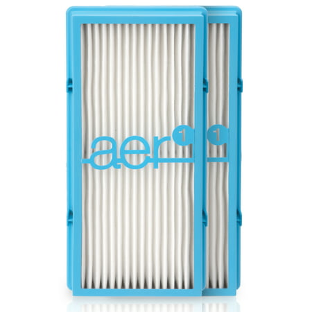 Holmes aer1 HEPA-Type Total Air Filter Replacement with Dust Elimination, 2 Count (Best Hepa Air Filters)