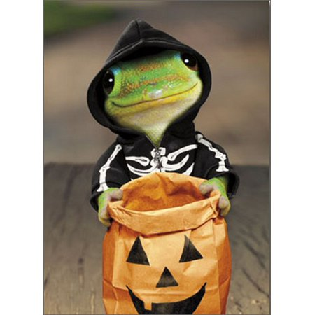 Avanti Press Gecko Skeleton Funny / Humorous Halloween Card](Funny Halloween Skeleton Quotes)