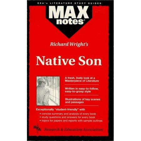 Native Son (MAXNotes Literature Guides) - eBook