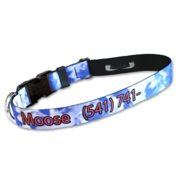 Strapworks DLPID-34-S 0. 75 W inch Deluxe Line Pet ID Adjustable Dog Collar - Small