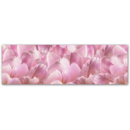 Trademark Fine Art 'Pink Tulip Scape' Canvas Art by Cora (Pink Tulip Pictures)