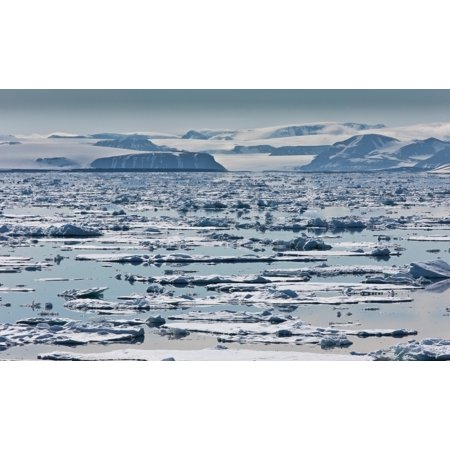 Icebergs Hinlopen Strait Spitsbergen Island Svalbard Norway Stretched Canvas - Panoramic Images (20 x 12)
