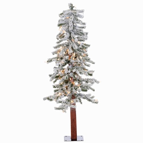 The Holiday Aisle Flocked Alpine 4' White/Green Pine Trees Artificial Christmas Tree with 100 Clear/White Lights