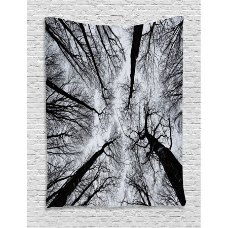 Forest Tapestry, Scary Winter Tops of the Trees Dark Dramatic Silhouettes Enchanted Nature Image, Wall Hanging for Bedroom Living Room Dorm Decor, Black Grey, by Ambesonne