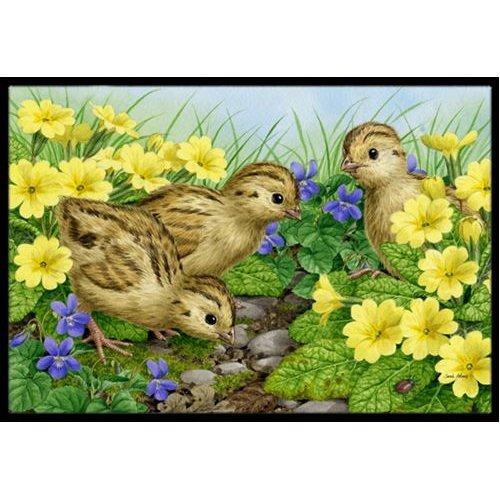 Pheasant Chicks Doormat by Caroline's Treasures