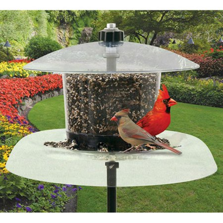 Droll Yankees The Jagunda Bird Feeder without Auger (Jagunda Feeder)