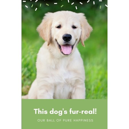 This Dog's Fur-Real! Cute Pun Journal : Ruled, Blank Lined Journal for Cute Animals Cats Dogs Pet Lovers, 6×9 120 Pages, Positivity for Girls Women Teenagers Kids, Personal Diary Notebook Gift for Sensitive Empath (Süße Brillen Für Teenager)