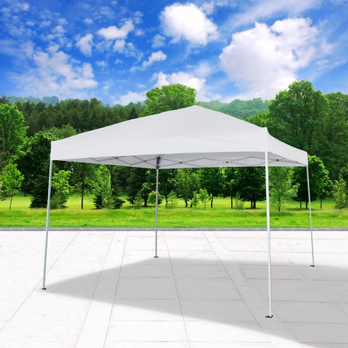 Cloud Mountain Inc. 10 Ft. W x 10 Ft. D Steel Pop-Up Party Tent by Cloud Mountain
