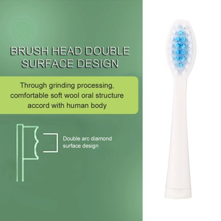 2Pcs Electric Replacement Dupont Nylon Brush Heads for Seago SG-881 Toothbrush - image 4 of 9