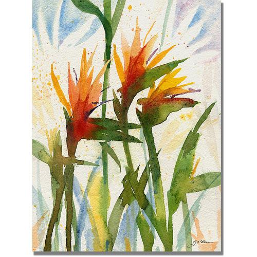 "Trademark Art ""Birds of Paradise"" Canvas Wall Art by Shelia Golden"