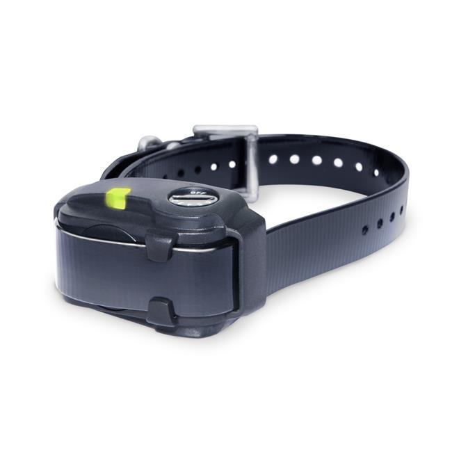 No Bark Dog Collar for Smaller Dogs, Black - image 1 of 1
