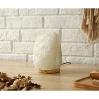 Himalayan Shop Lenticular Salt Lamp With Adapter