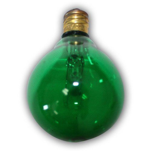 String Light Company Incandescent Light Bulb (Set of 25)
