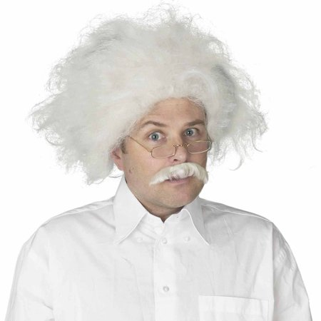 Einstein Wig Adult Halloween Costume Accessory