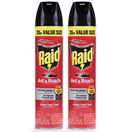 Raid Ant & Roach Killer 26, Outdoor Fresh Scent, 20 Ounces, 2 (Raid Ant Killer)