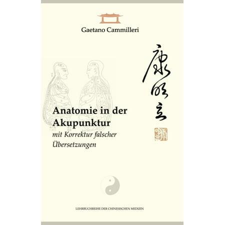 Anatomie in der Akupunktur mit Korrektur falscher Übersetzungen - eBook (Korrektur)