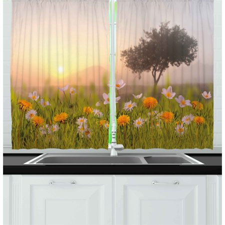 Nature Curtains 2 Panels Set, Daisy Flowers Meadow with Tree Background in Mist Ecp Garden Botany Fresh Scenery, Window Drapes for Living Room Bedroom, 55W X 39L Inches, Multicolor, by (Dancing Daisy Panel)