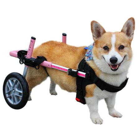 Corgi Wheelchair - For Small Dogs 18-40 lbs - Veterinarian