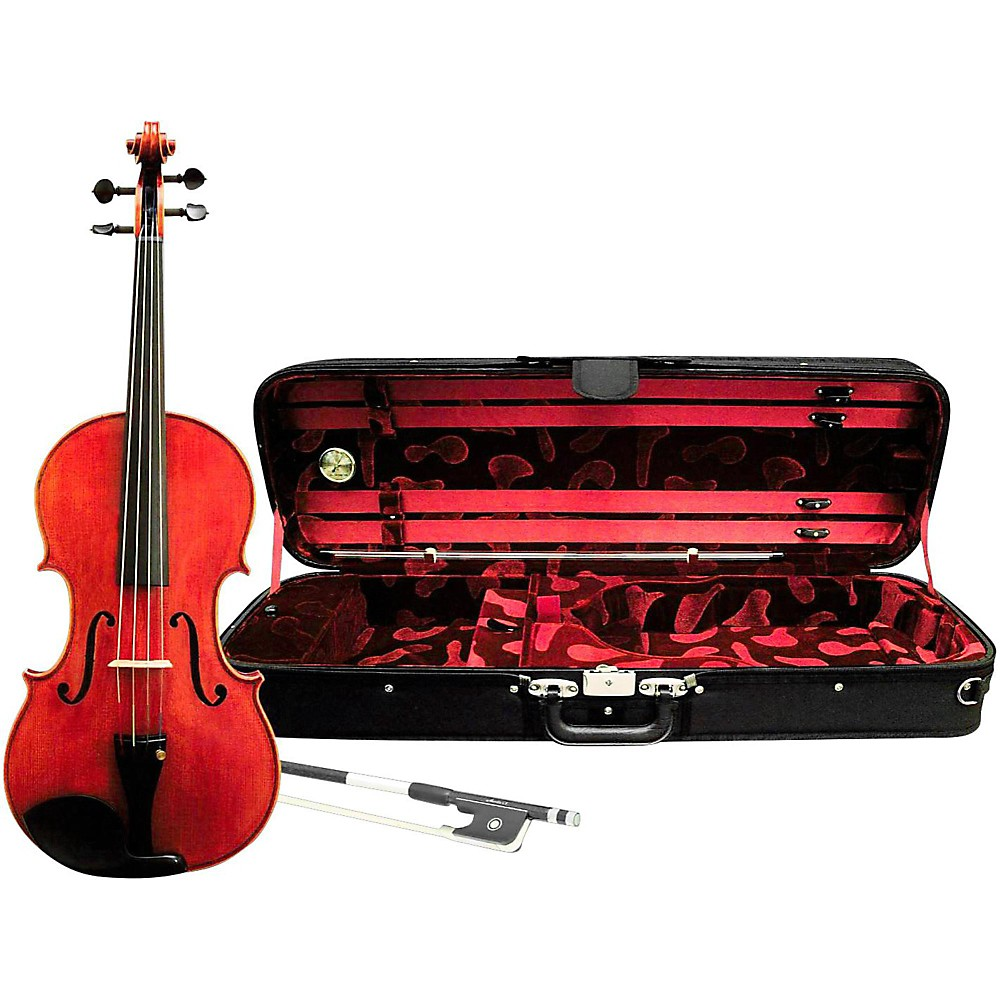 Ren Wei Shi Artist Viola 15 1/2 In. with Arcolla Bow and Oblong Case