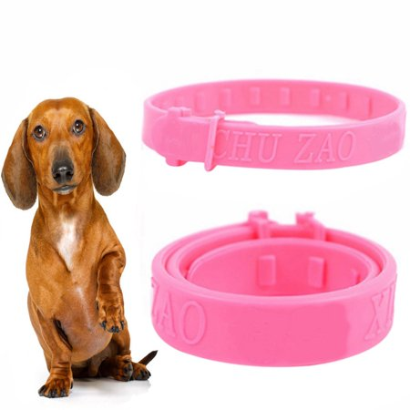 Flea Tick Collar for Dogs - Flea and Tick Insect Mosquito Control Prevention Collar for (Flea Tick And Mosquito Control For Dogs)