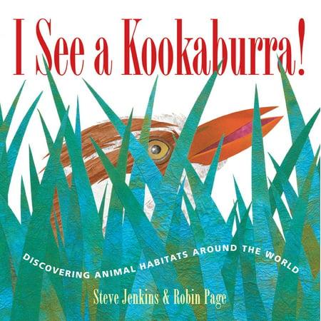 Kookaburra Animals (I See a Kookaburra! - eBook )