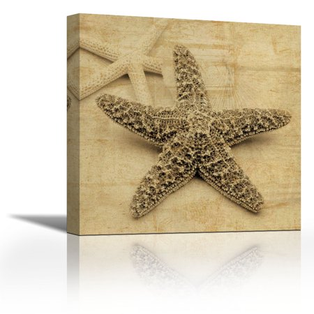 Starfish - Contemporary Fine Art Giclee on Canvas Gallery Wrap ...