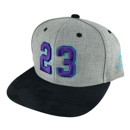 Player Number #23 Suede Snapback Hat Cap Air Jordan Grape - Heather Grey Purple ()