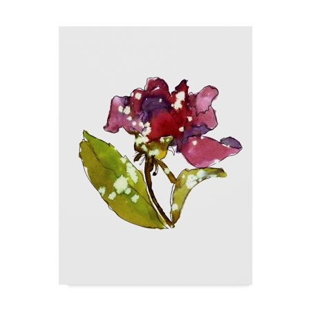 - Trademark Fine Art 'Marsala Rose' Canvas Art by Cayena Blanca