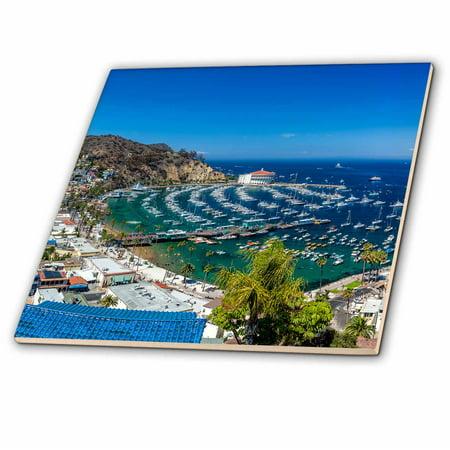 Avalon Catalina (3dRose A Panorama of Avalon on Catalina Island - Ceramic Tile, 6-inch)