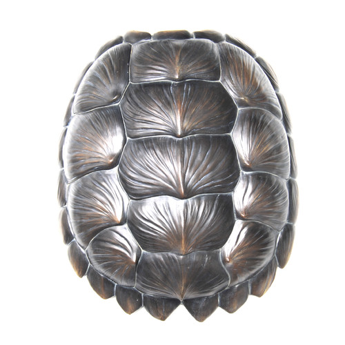 Near and Deer Replica Gator Turtle Shell Wall D cor