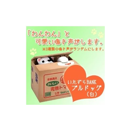 Itazura Piggy Bank Burudoggu Shiro Brown Puppy Dog Coin Bank by