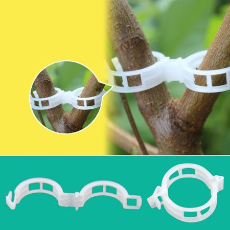 Makes Plants Healthier, 100 PCS Plant Support Garden Clips for Vine Vegetables Tomato to Grow