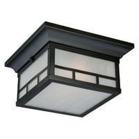 Nuvo Lighting 60/5606 Drexel 2 Light Flush Mount Outdoor Ceiling Fixture - 11 In