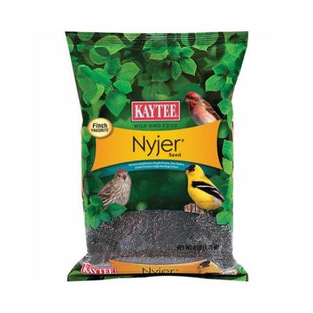 Kaytee Products 100213768 Wild Bird Seed, Nyjer Thistle, 3-Lbs.