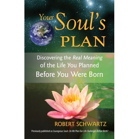 Your Soul's Plan : Discovering the Real Meaning of the Life You Planned Before You Were Born