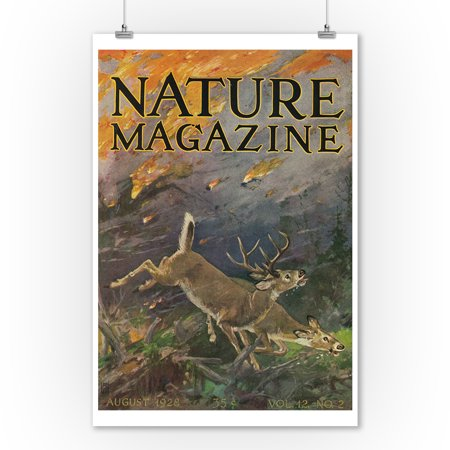 Nature Magazine - View of a Forest Fire with Deer Running away from the Flames (9x12 Art Print, Wall Decor Travel Poster)