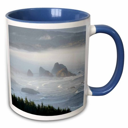 - 3dRose USA, Oregon, Gold Beach. Foggy morning on seashore - US38 BJA0712 - Jaynes Gallery - Two Tone Blue Mug, 11-ounce