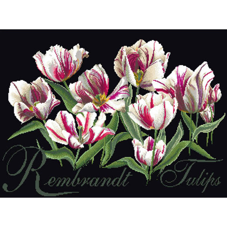"""Rembrandt Tulips On Aida Counted Cross Stitch Kit, 19.5"""" x 14"""", 18 Count"""