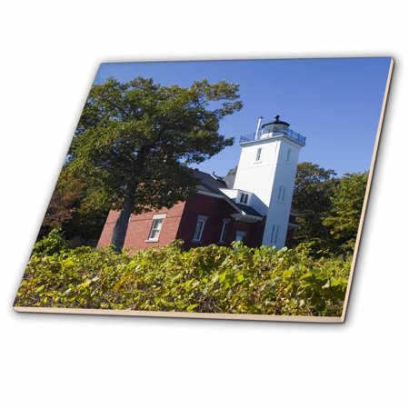 Forty Eight Inch Downrod - 3dRose MI, Lake Huron, Forty Mile Point Lighthouse - US23 WBI0162 - Walter Bibikow - Ceramic Tile, 8-inch
