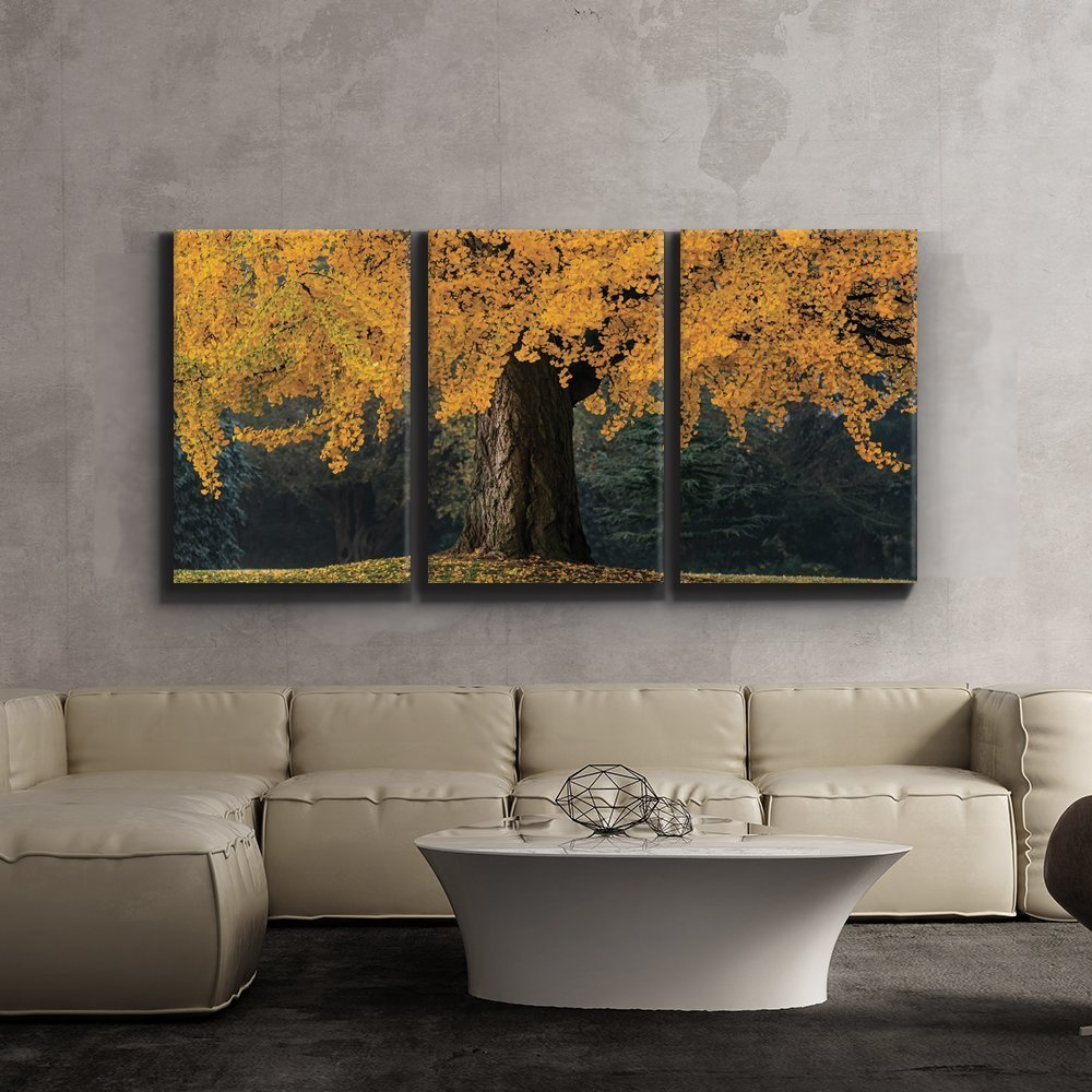 """3 Piece Canvas Print - Contemporary Art, Modern Wall Decor - Beautiful yellow autumn tree - Landscape - Giclee Artwork - Gallery Wrapped Wood Stretcher Bars - Wall26 - 24""""x36""""x3 Panels"""
