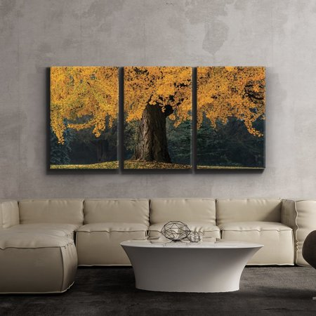3 Piece Canvas Print - Contemporary Art, Modern Wall Decor - Beautiful yellow autumn tree - Landscape - Giclee Artwork - Gallery Wrapped Wood Stretcher Bars - Wall26 - 24