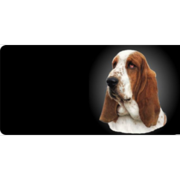 Basset Hound Dog Photo License Plate  Free Personalization on this Plate