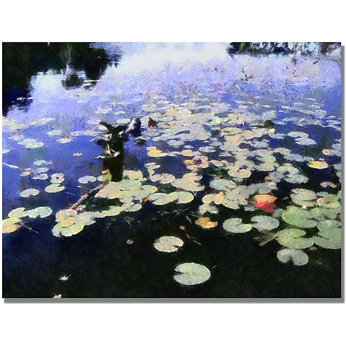 "Trademark Fine Art ""Water Lilies in the River II"" Canvas Art by Michelle Calkins"