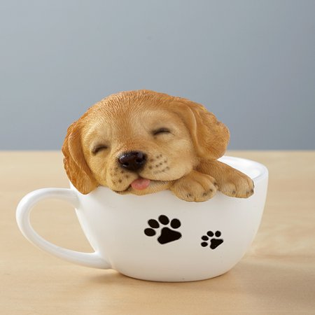 Teacup Pup Golden Retriever (Pup Retriever)
