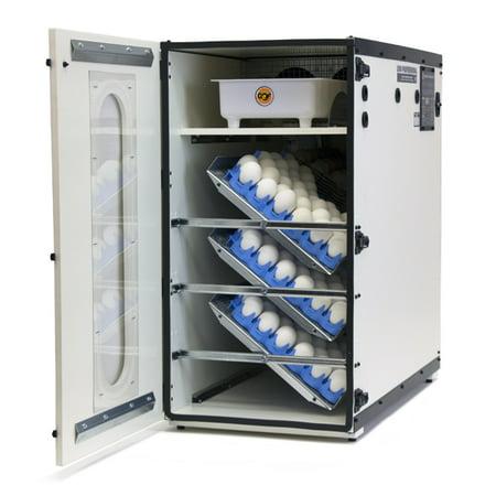 GQF Professional Egg Incubator Cabinet Digital LCD Display Picture Window 1500
