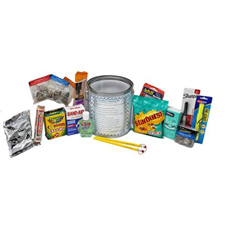 Teacher's Survival Kit | Back to School Appreciation Gift | First Year Teaching Gift | Fun Teacher Paint Pail