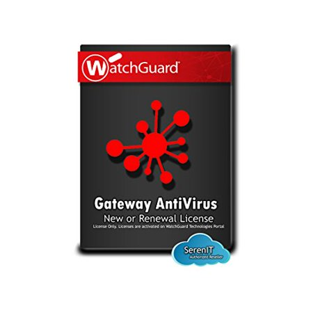 WatchGuard Gateway AntiVirus 1-yr for Firebox M370 (Best Antivirus For Chromebook)